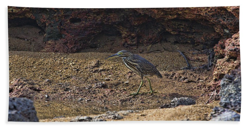 Heron Bath Sheet featuring the photograph Heron by Douglas Barnard