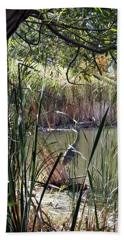 Great Hand Towel featuring the photograph Heron In The Lagoon by Kay Novy