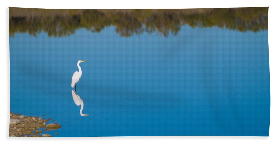 Fall Color Bath Sheet featuring the photograph Herron 3 by Sean Wray