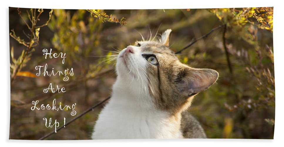Hey Bath Sheet featuring the photograph Hey Things Are Looking Up by Kathy Clark