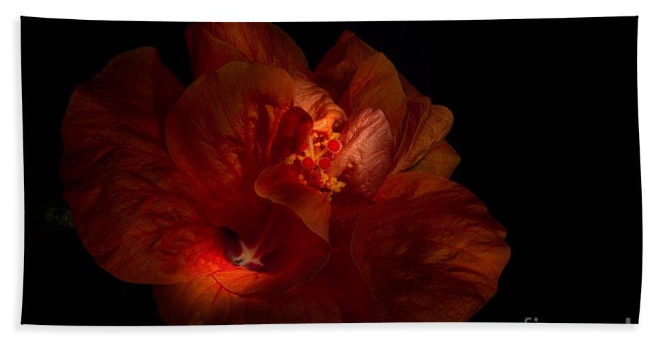 Hibiscus Bath Sheet featuring the photograph Hibiscus Glow by Ann Garrett