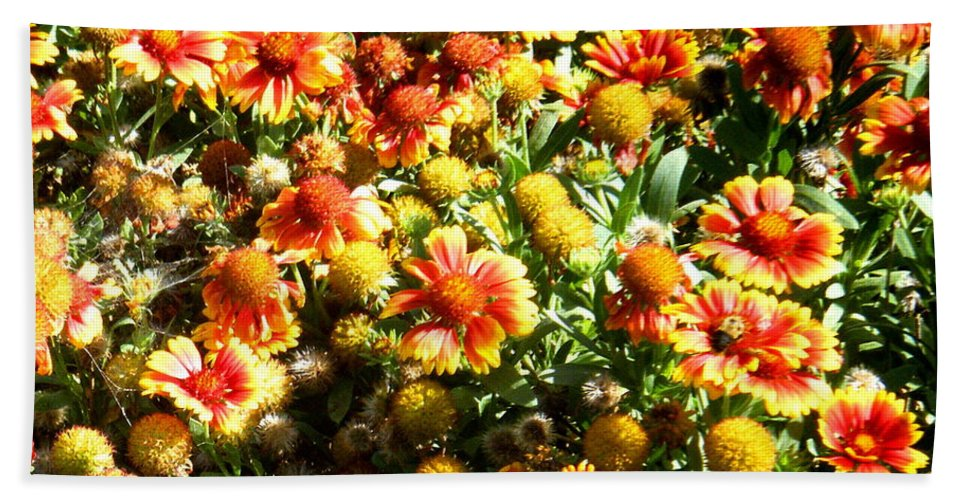 Lady-bug Bath Sheet featuring the photograph Hidden In Plain Sight by April Patterson