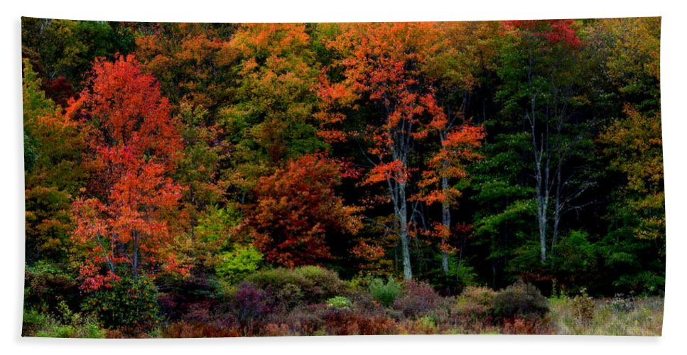 Autumn Hand Towel featuring the photograph Hidden Valley Lake by Karen Wiles