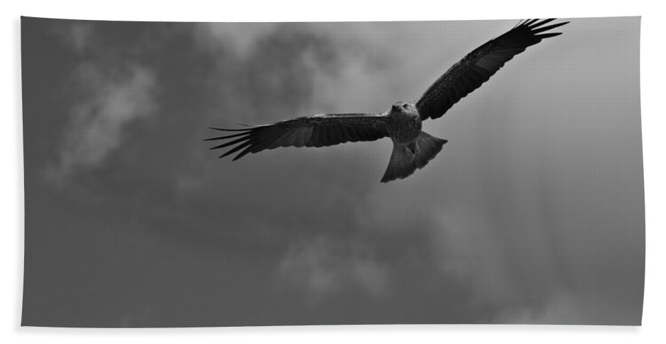 Kite Hand Towel featuring the photograph High As A Kite by Douglas Barnard