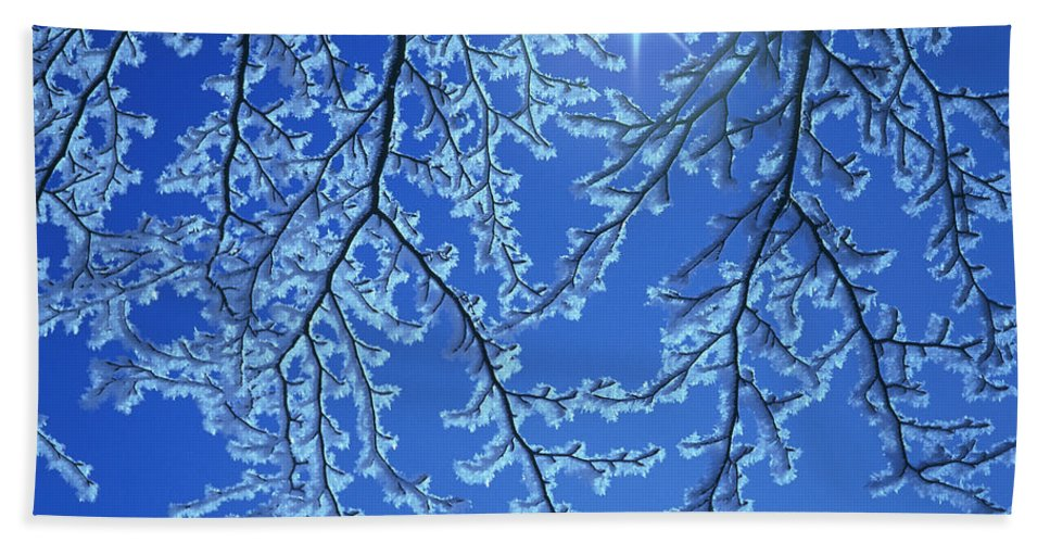 Hoar Frost Hand Towel featuring the photograph Hoar Frost by Hermann Eisenbeiss and Photo Researchers