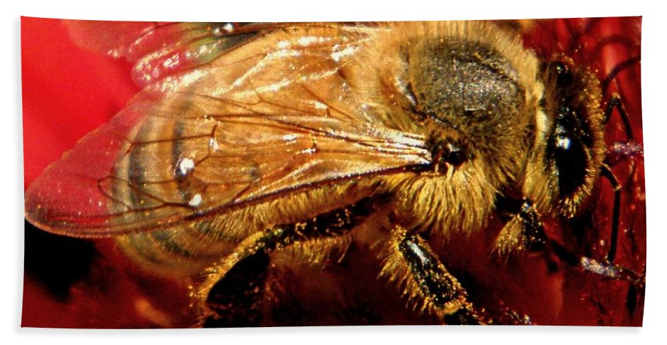 Bee Bath Sheet featuring the photograph Honey Bee by Chris Berry