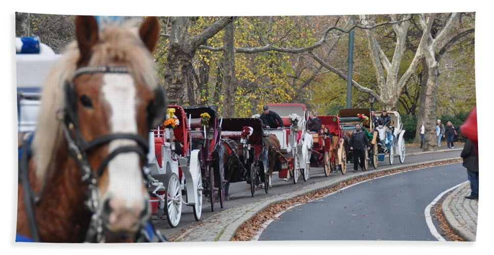 Nyc Bath Sheet featuring the photograph Horse-drawn Carriages by Rich Bodane