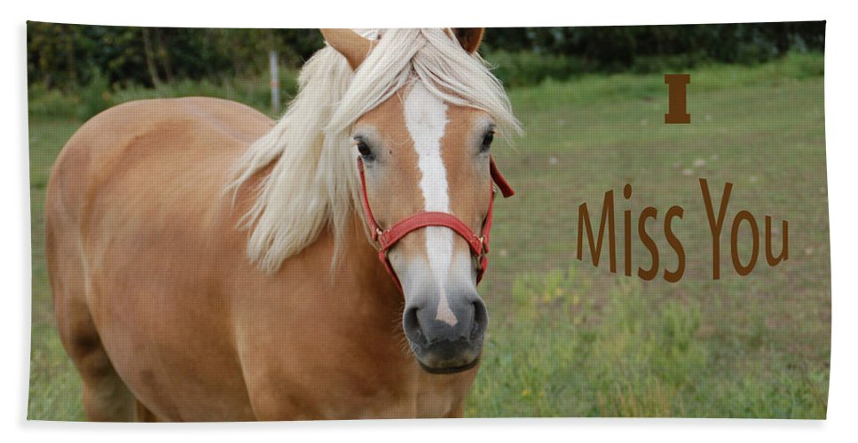 Horse Hand Towel featuring the photograph Horse Miss You by Aimee L Maher ALM GALLERY