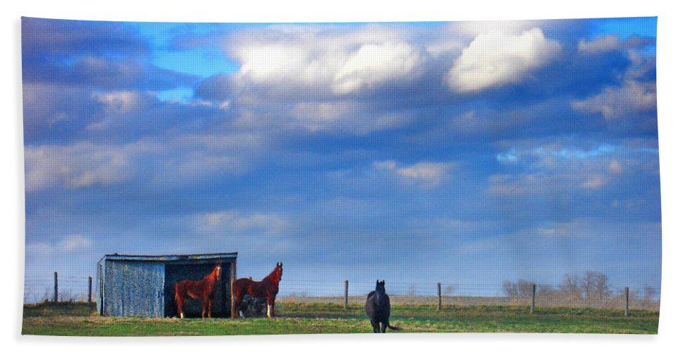 Landscape Bath Sheet featuring the photograph Horse Ranch Landscape by Steve Karol