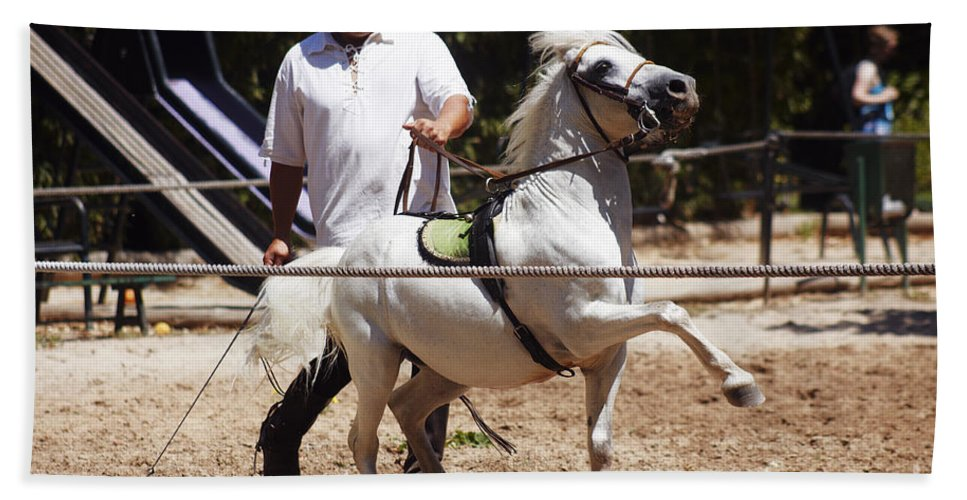 Caballo Bath Sheet featuring the photograph Horse Training by Agusti Pardo Rossello