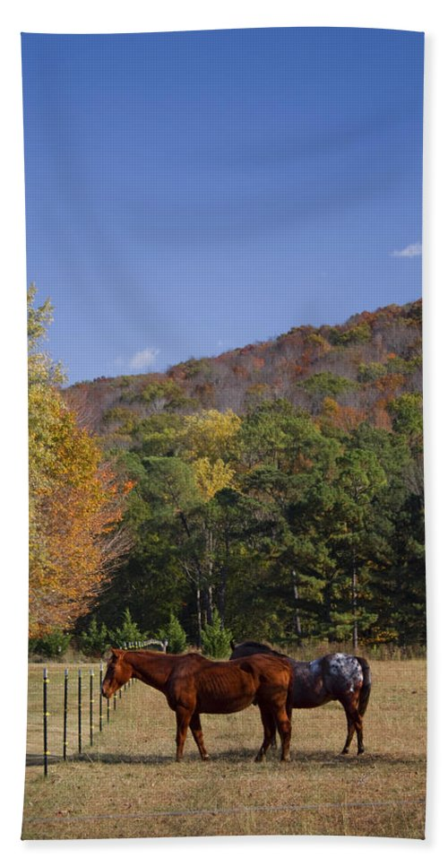 Horse Bath Sheet featuring the photograph Horses And Autumn Landscape by Kathy Clark