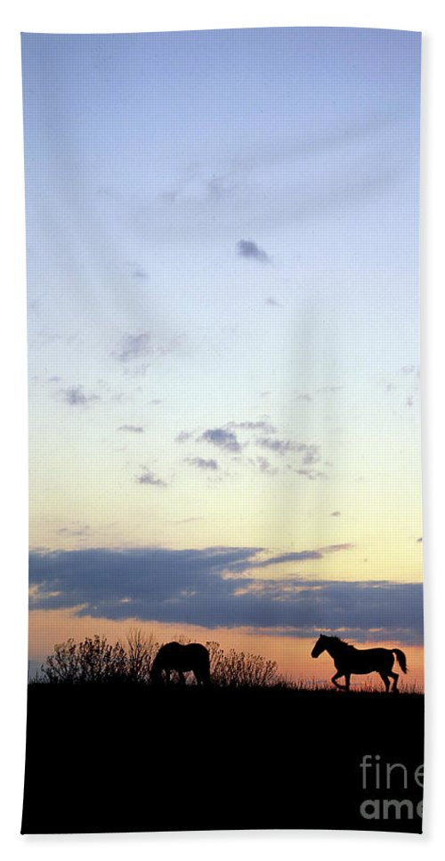 Silhouette Bath Sheet featuring the photograph Horses And Sky by Mike Nellums