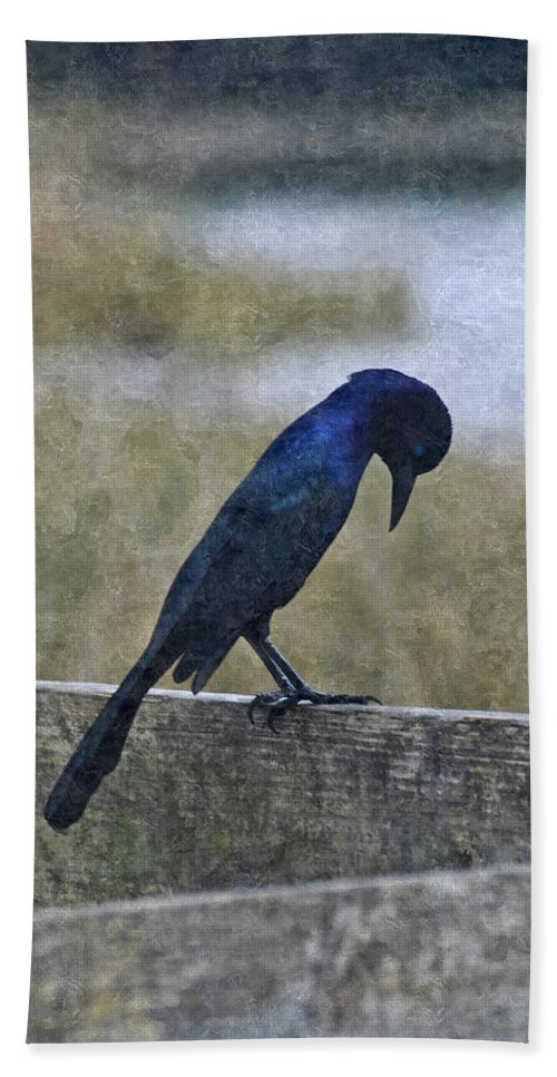 Boat-tailed Grackle Hand Towel featuring the photograph I Bow My Head by Carolyn Marshall
