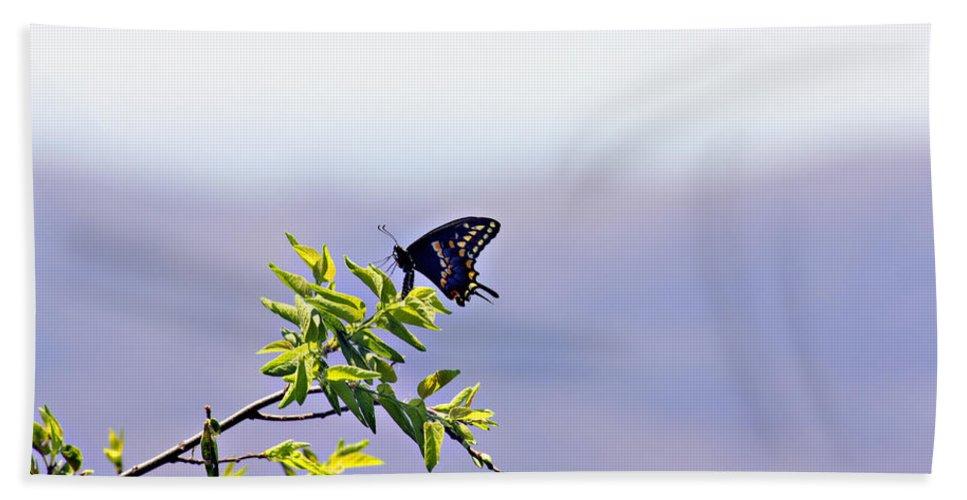 Butterfly Bath Sheet featuring the photograph I Fly High by Douglas Barnard