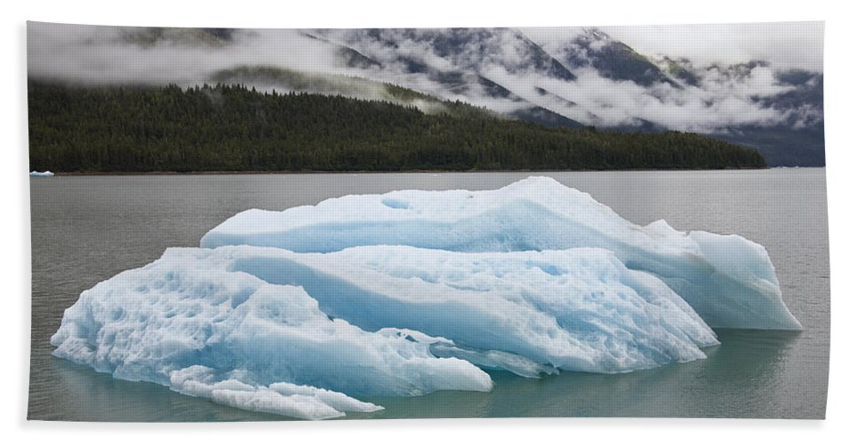 Mp Hand Towel featuring the photograph Iceberg In Endicott Arm, Inside by Konrad Wothe