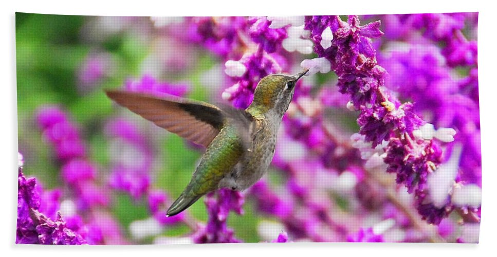 Hummers Bath Sheet featuring the photograph In Flight by Lynn Bauer