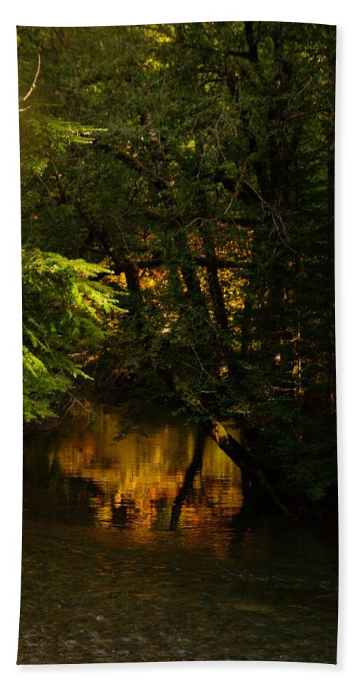 Rivers Hand Towel featuring the photograph In Golden Moments Of Reflection by Jeff Swan