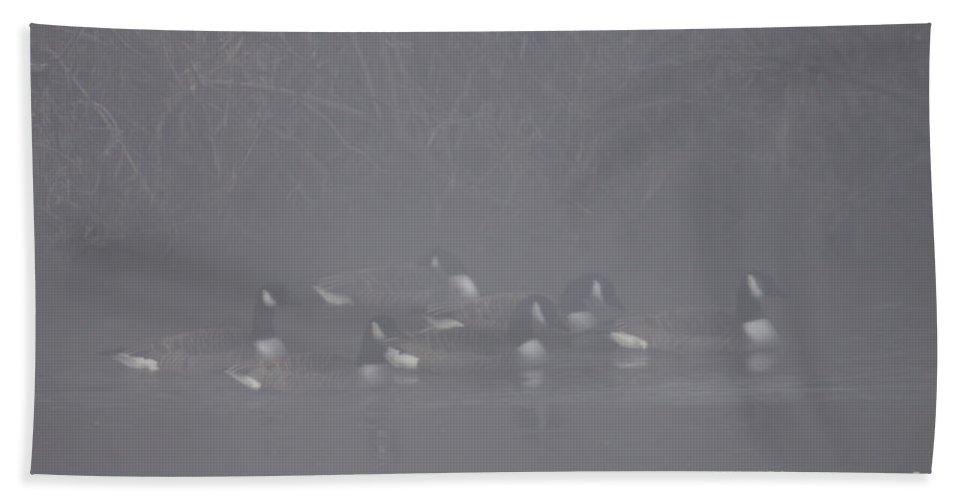 Fog Bath Sheet featuring the photograph In The Morning Mist by Angel Ciesniarska