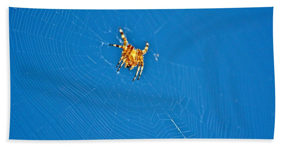 Insects Bath Sheet featuring the photograph Intelligent Design by Diana Hatcher