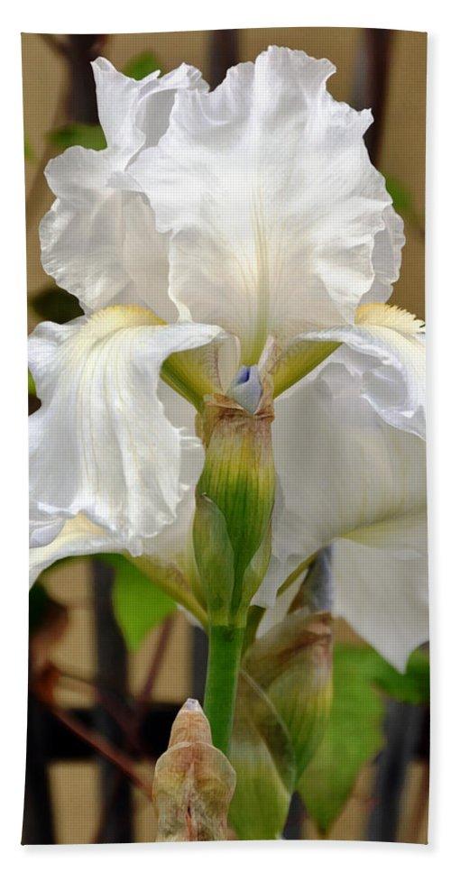 Garden Bath Sheet featuring the photograph Iridescent Iris by Angelina Vick