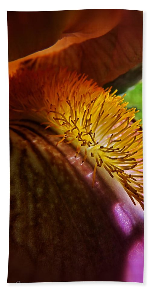 Nature Bath Sheet featuring the photograph Iris Stamen Macro by Debbie Portwood