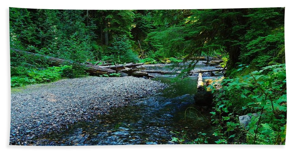 Water Hand Towel featuring the photograph Iron Creek by Jeff Swan