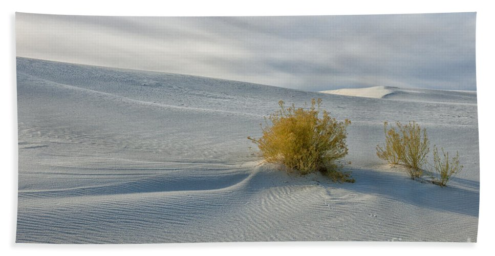 Southwest Bath Sheet featuring the photograph Isolation by Sandra Bronstein