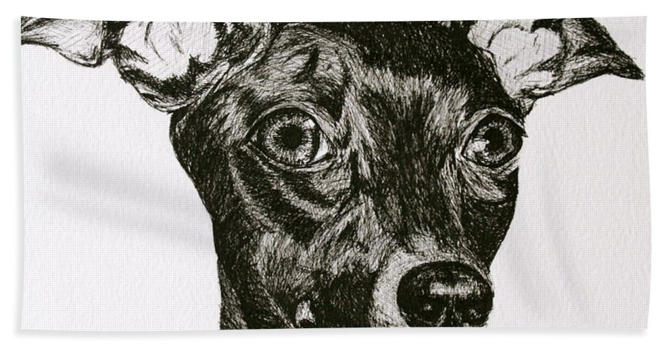 Ig Bath Sheet featuring the drawing Italian Greyhound by Susan Herber