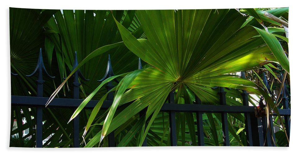 Tropical Bath Sheet featuring the photograph Its Pretty And Tropical In Key West by Susanne Van Hulst