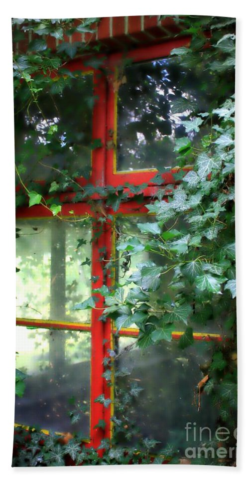 Window Hand Towel featuring the photograph Ivy Embrace by Carol Groenen