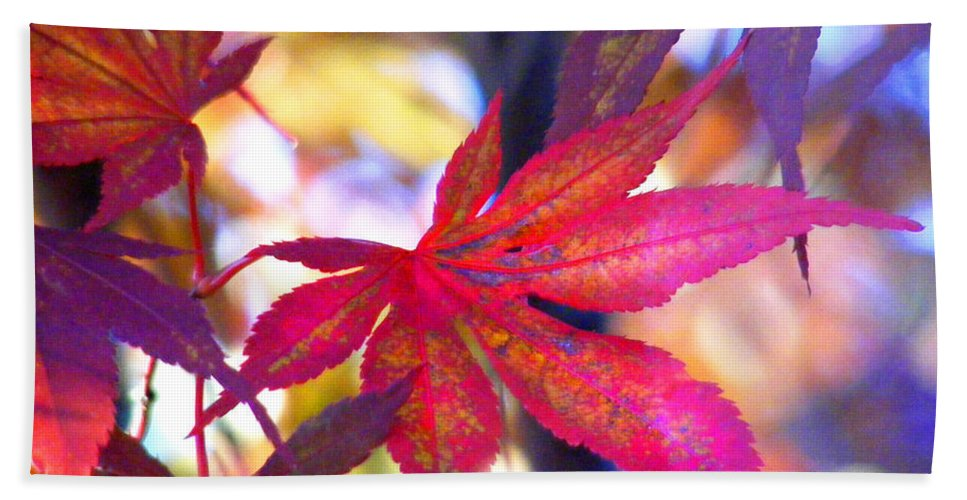 Fall Hand Towel featuring the photograph Japanese Maple Leaves In The Fall by Duane McCullough