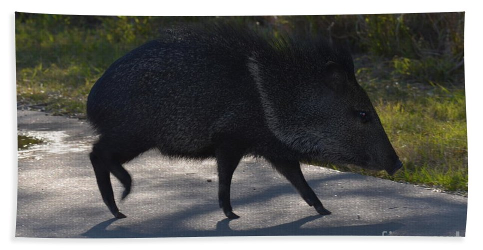 Javelina Bath Towel featuring the photograph Javelina by Donna Brown