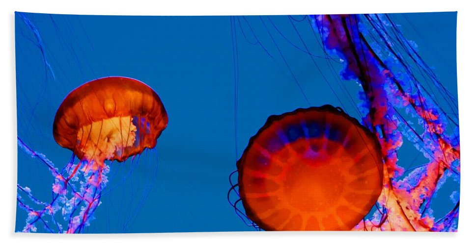 Jellyfishes Bath Sheet featuring the photograph California Monterey Aquarium Jellyfish Exhibit by Tap On Photo