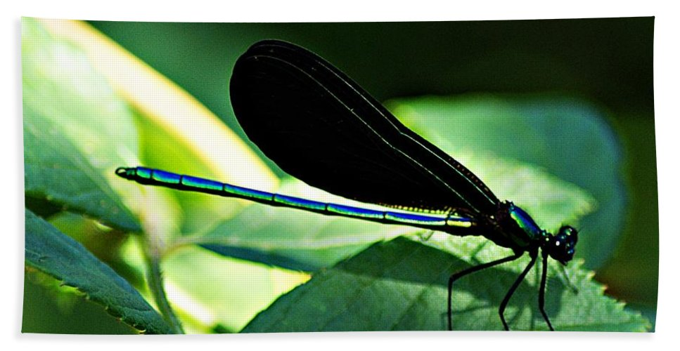 Dragonfly Bath Sheet featuring the photograph July Dragonfly II by Joe Faherty