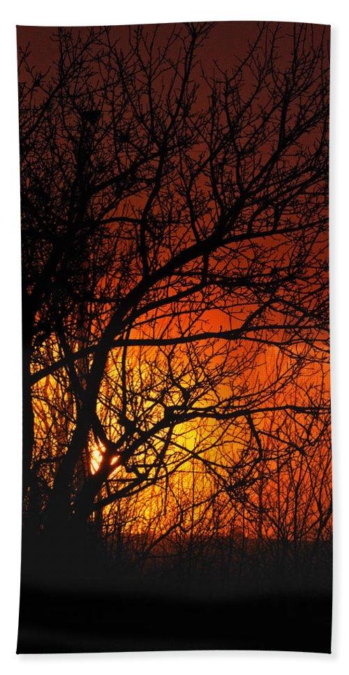 Sunrise Bath Sheet featuring the photograph Just A Pretty Sunrise by Susan Capuano