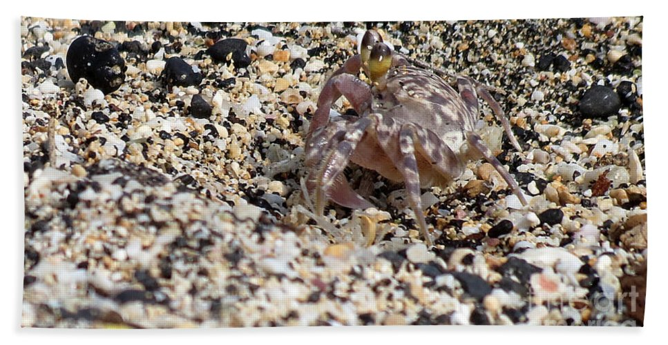 Crab Bath Sheet featuring the photograph Just Taking A Walk by Elizabeth Harshman