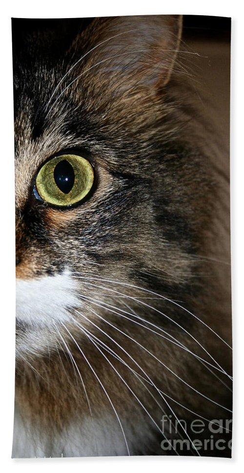 Feline Bath Sheet featuring the photograph Keeping An Eye On You by Susan Herber