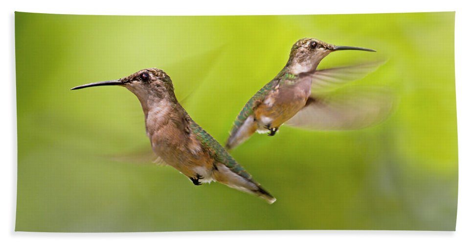 Hummingbird Bath Sheet featuring the digital art Keeping Watch by Betsy Knapp