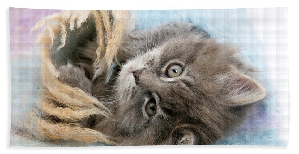Animal Hand Towel featuring the photograph Kitten In Blanket by Mark Taylor