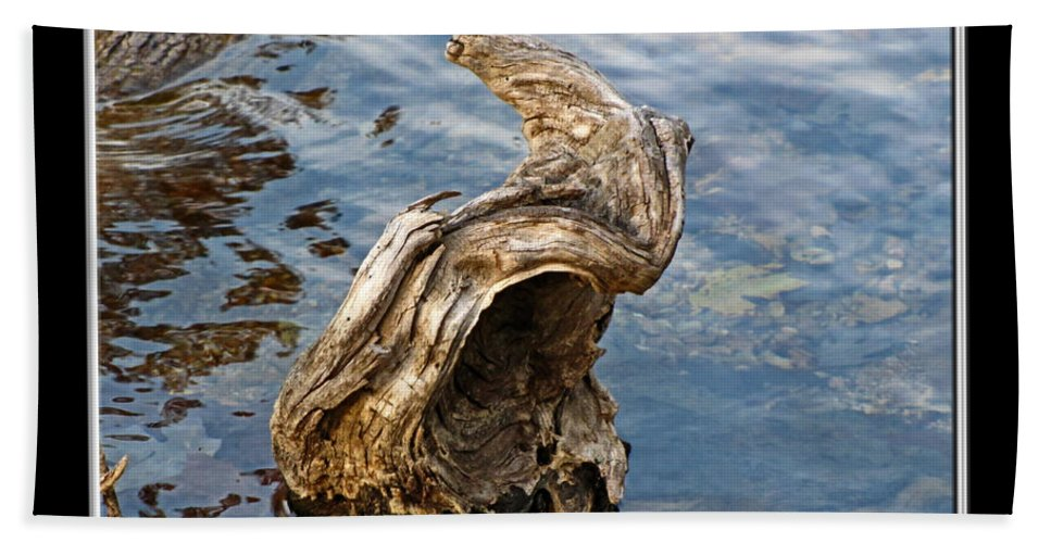 Bath Sheet featuring the photograph Knarled Stump In The Water by Debbie Portwood