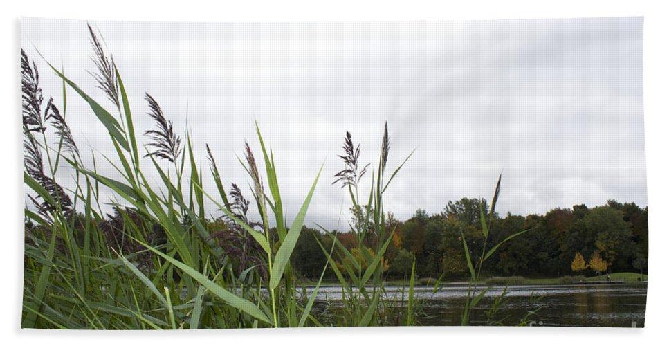 Lac Des Castors Bath Sheet featuring the photograph Lac Des Castors by Donato Iannuzzi