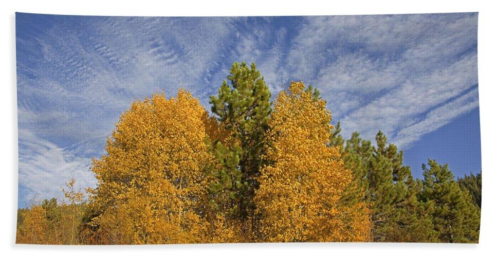 Lake Tahoe Bath Sheet featuring the photograph Lake Tahoe Aspen Sky by John Stephens