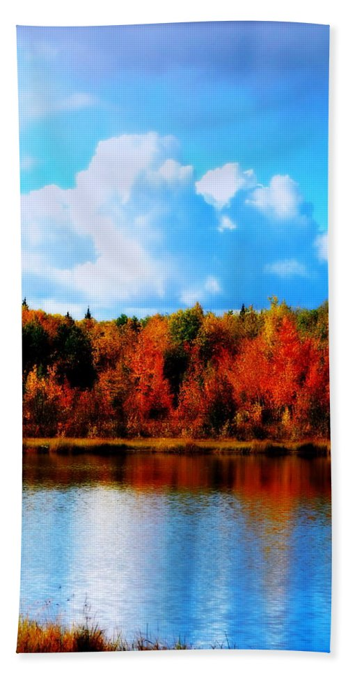 Water Hand Towel featuring the photograph Lakeside Drama Ll by Kathy Sampson
