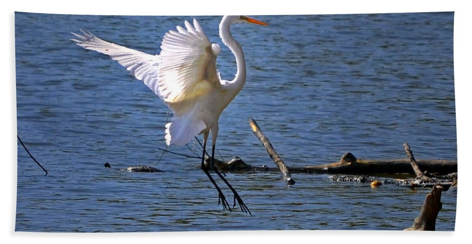 Color Photography Hand Towel featuring the photograph Landing Gear Down by Sue Stefanowicz