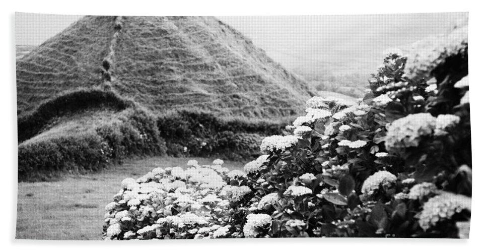 Landscape Bath Sheet featuring the photograph Landscape With Hydrangeas by Gaspar Avila
