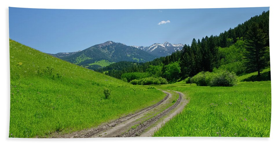 Americas Bath Sheet featuring the photograph Lane View Of Crazy Mountains by Roderick Bley