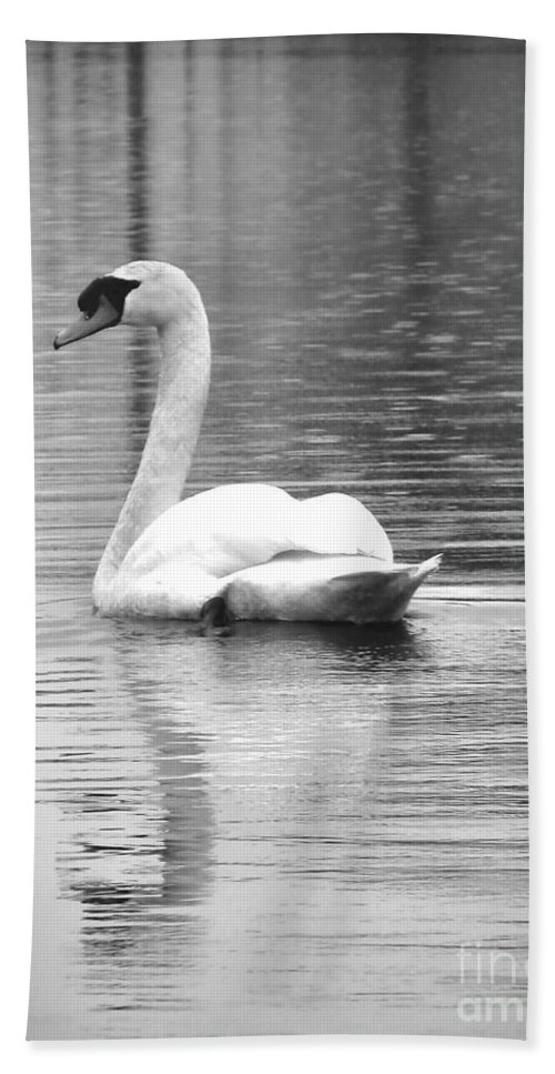 Swan Hand Towel featuring the photograph Last Glimpse by Art Dingo