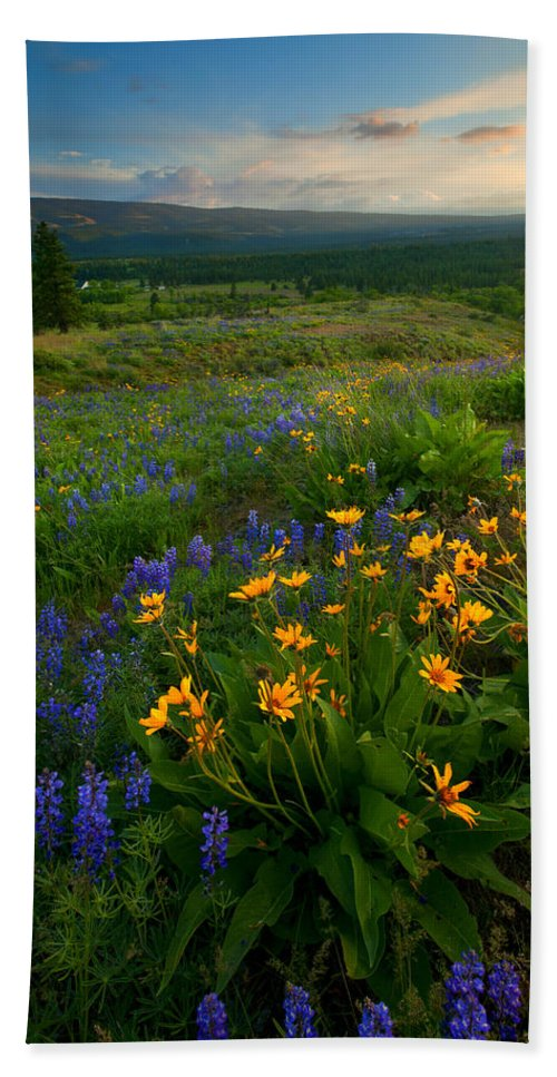 Meadow Hand Towel featuring the photograph Last Light Over The Wenas by Mike Dawson