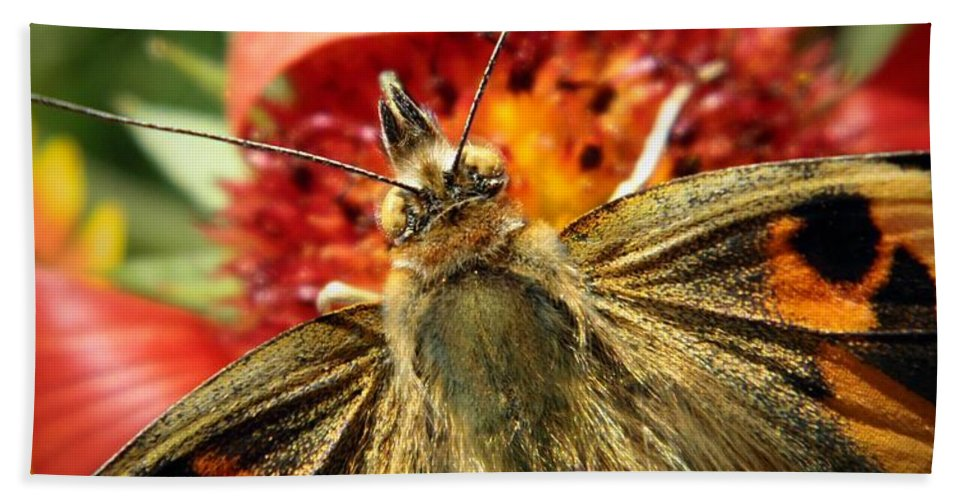 Nature Bath Sheet featuring the photograph Latecomer by Chris Berry