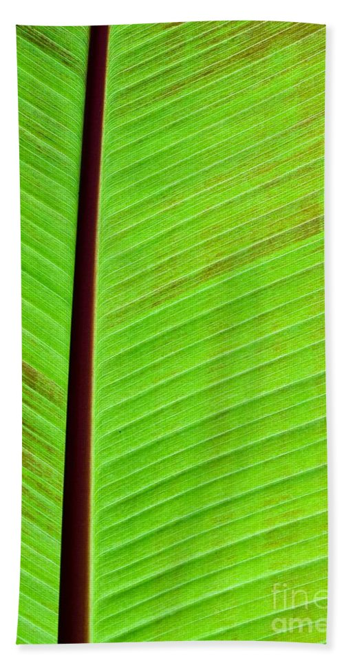 Green Bath Sheet featuring the photograph Leaf Abstract by Sabrina L Ryan